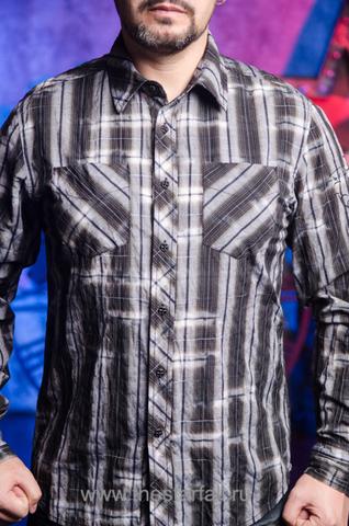 Affliction | Рубашка мужская A251 перед