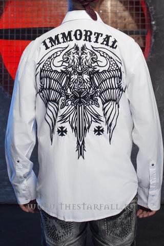 Рубашки Rebel Spirit LSW141722 спина